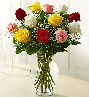 12 Premium Long Stem Assorted Roses