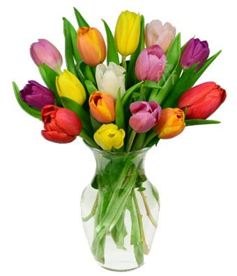 Rainbow of Tulips Bouquet
